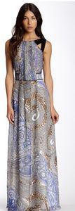 DS Dress Debbie Shuchat Maxi NWT